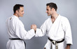 Karate vs Taekwondo, Gegenüberstellung 4