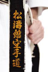Karate, Shotokan Karate-Do