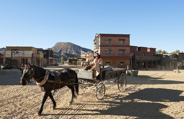 Cowboy driving a wagon at Mini Hollywood Movie Set , Spain