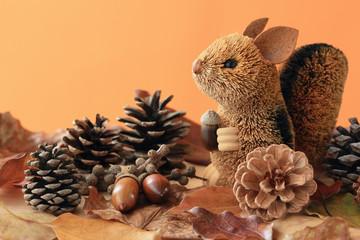Happy Squirrel in Autumn