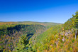 Grand Canyon of PA - view from Leonard Harrison State Park