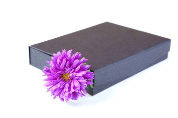 gift box with  flower isolated