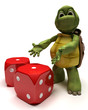 Tortoise with dice