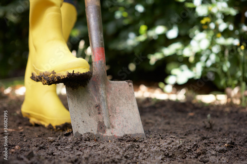 Person digging in garden