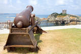 Historic Ottoman Cannon at Sile in Istanbul poster