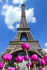 Tour Eiffel, Parigi