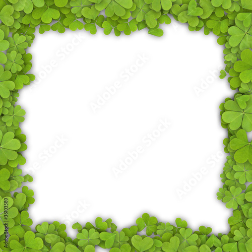 Frame made of clover.