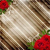 Red roses with frame on a striped background