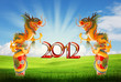 Dragon of year 21012 background with clipping path