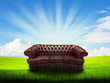 alone sofa on grass field