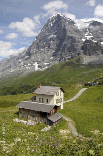 Summit and North Face of the Eiger