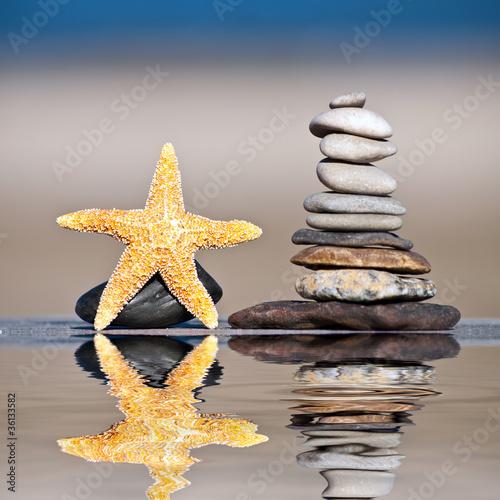 Foto op Canvas Zen Seestern im Wasserspiegel