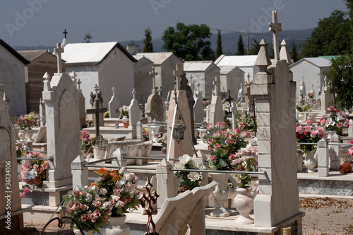 A cemetery in Portugal