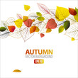 Vector Autumn abstract floral background