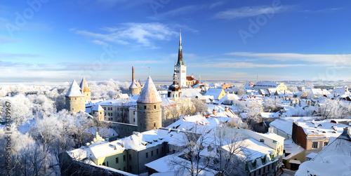 Aluminium Oost Europa Tallinn city. Estonia. Snow on trees in winter, panoram view
