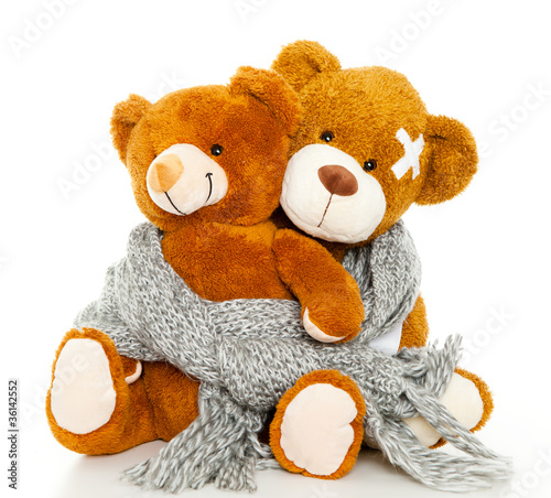 bären erkrankung