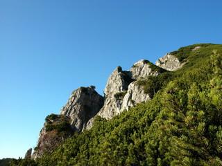 Berggipfel des Fahrenberg am Walchensee in Oberbayern