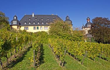 Schloss Vollrads im Rheingau (Hessen)