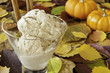 Thanksgiving Cinnamon Ice Cream