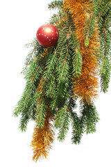 Fir tree branch on a white background. Christmas decoration.