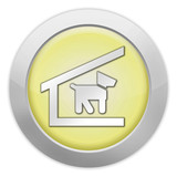 Light Colored Icon (Yellow)