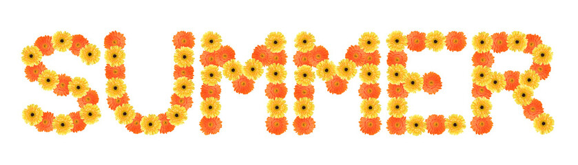 Summer word created by daisy flowers