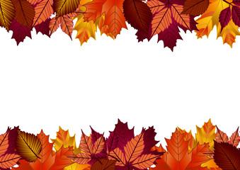 autunno composizione