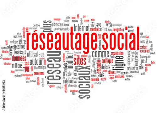 Réseautage social (Social Network)