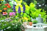 Sommer Flor