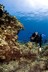 Female Scuba Diver swimming on a Hawaiian Reef