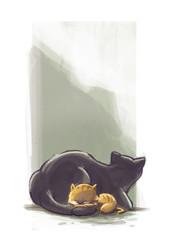 gatos acurrucados