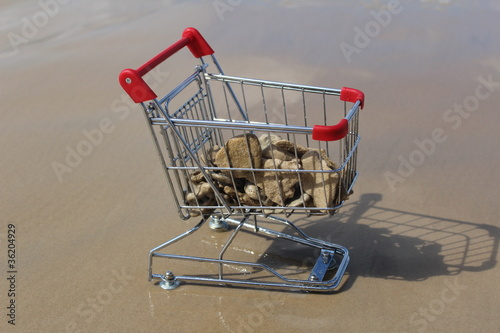 Retail cart stuck at sea water with stones inside