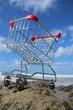 Retail Cart Outdoor