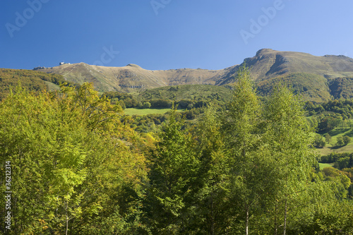 Monts du Cantal 03