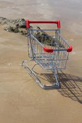 Retail cart stuck in the water, methaphor for business challenge