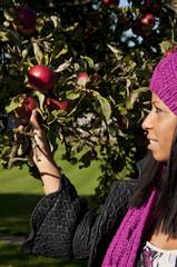 Woman picking apple