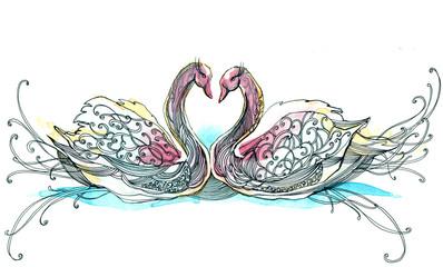 swan couple (series C)