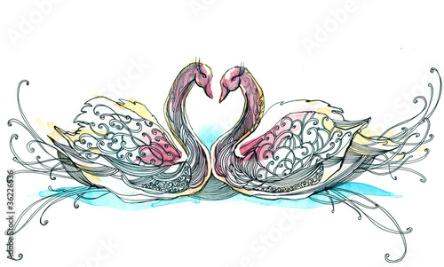 swan couple (series C)