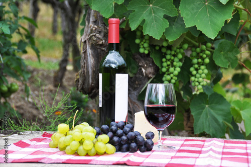 Red wine and grapes served at a picnic © HappyAlex