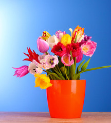 Tulips in vase on blue background