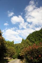 秋の里山と空
