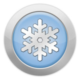 "Light Colored Icon ""Winter Recreation"""