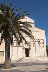 Termoli (Campobasso, Molise, Italy) - Cathedral facade and palm