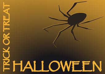Halloween Spinne