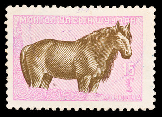 Mongolia, shows horse, circa 1985
