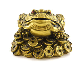 Chinese Feng Shui lucky money frog for good luck and riches