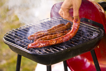 Barbecue de Merguez