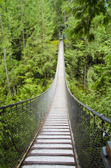 lynn canyon swing bridge