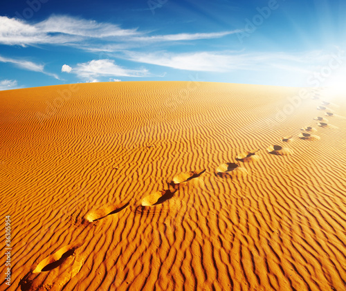 Footprints on sand dune