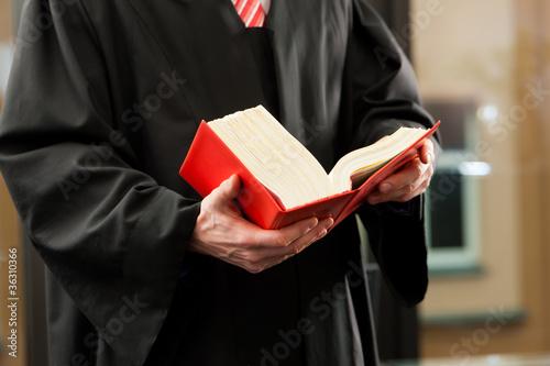 Anwalt mit Gesetzbuch - 36310366